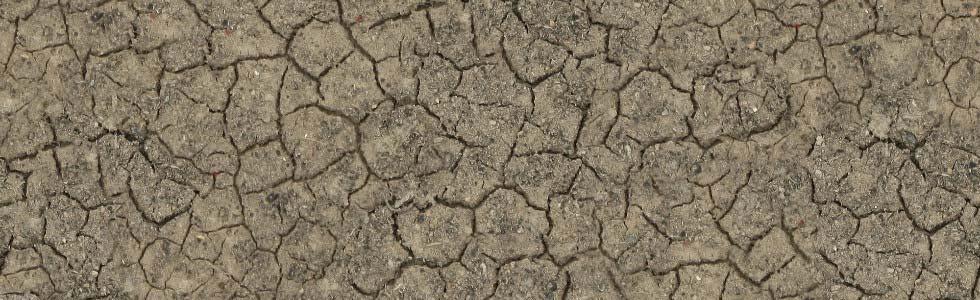 Changement climatique : quelles conséquences sur votre exploitation ?